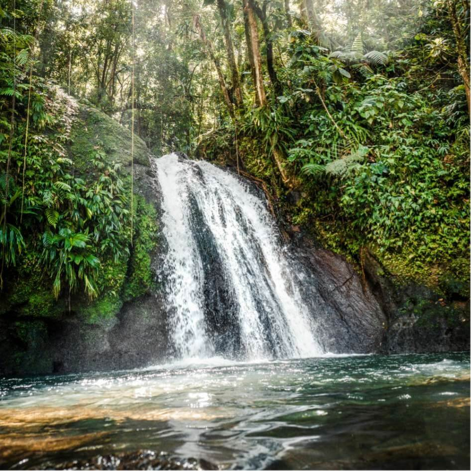 Cascade ecrevisses Guadeloupe